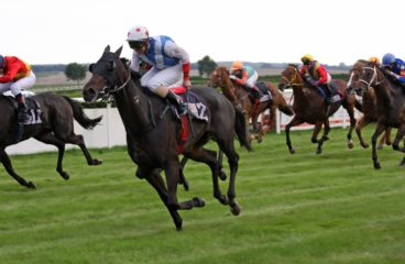How You Can Start To Make A Profit From Horse Racing Tipsters