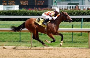 Kentucky Derby Top 15