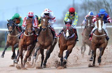 Notable Past Triple Crown Contenders Denied Victory in The Belmont Stakes